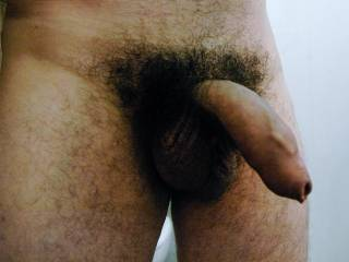 Uncut and hairy