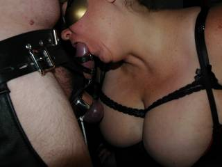 Wife sucking on the head after she strapped me up and tied the balls.