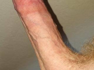Hot circumcised erect hard dick cock close-up