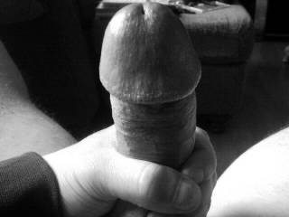 Would you suck this big thick cock?
