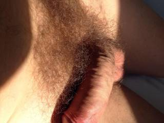 my uncut dick in the morning sun