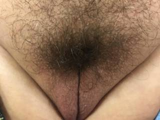 Just growing my pussy hair back for the cold winter I hope you like