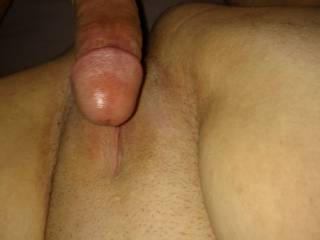 Dick on the pussy