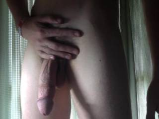 veiny cock shot