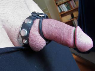 using a cock ring setup... getting hard with it