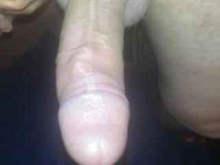 cokrod hard throbbing cock for you to play with
